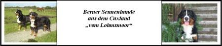 Aja-Pünktchen vom Deichgraf und Evie vom Colmbergwäldchen