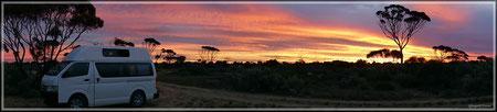 Camping im Busch mit Sonnenuntergang