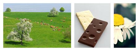 schwizer speziaalitäten, bündner spezialitäten, walliser spezialitäten, emmentaler spezialitäten, meringue, schweizer schokolade