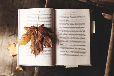 Herbstblues ade Buch lesen