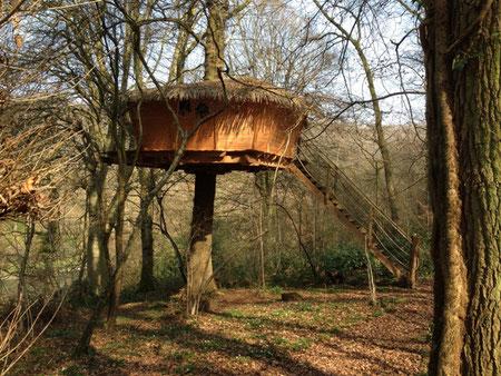 Cabane perchée à 5 m de hauteur, accessible par un escalier droit, rigide en bois, dans un chêne centenaire, Normandie La Chaussée