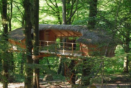 Grande cabane double, avec terrasse de 30 m², semi-couverte et traversante, perchée dans trois hêtres à 4 m de hauteur, accessible par un escalier en colimaçon, dans un bois à La Chaussée, Normandie