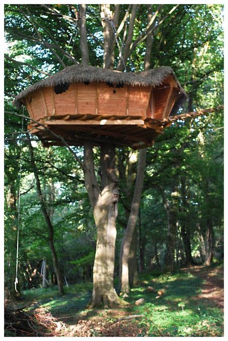 Cabane dans les arbres Les Faines accès passerelle Normandie