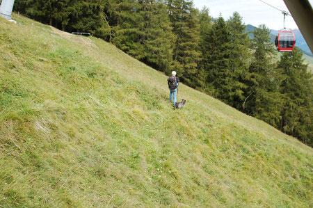 steiler Abstieg über die Wiese vom Motta Naluns
