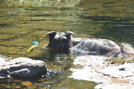 Lady schwimmt