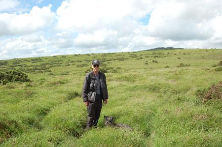 hier im Dartmoor kann man kreuz und quer laufen