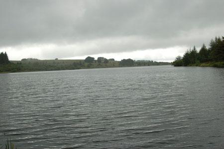 das Fernworthy Reservoir