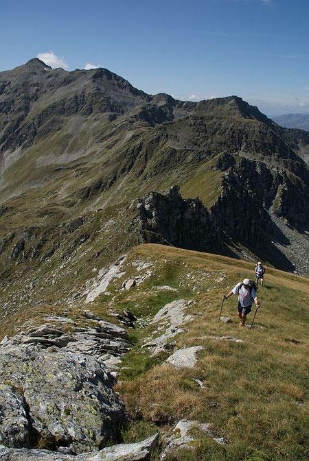 Aufstieg zum Hirtenkopf, im Hintergrund Sadnig (links), Mulleter Sadnig (breiter Rücken im rechten Bildteil) und Zoppspitze (Bildmitte)