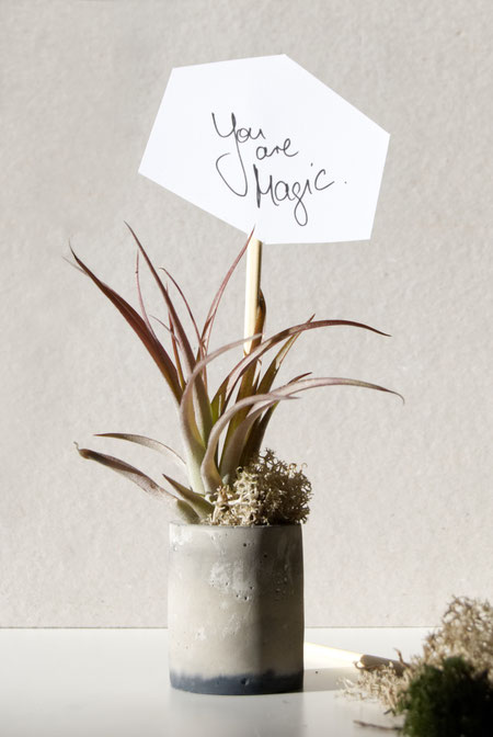 You Are Magic Free Printable by PASiNGA Concrete Chimney Air Plant Holder Valentines Day Gift Idea