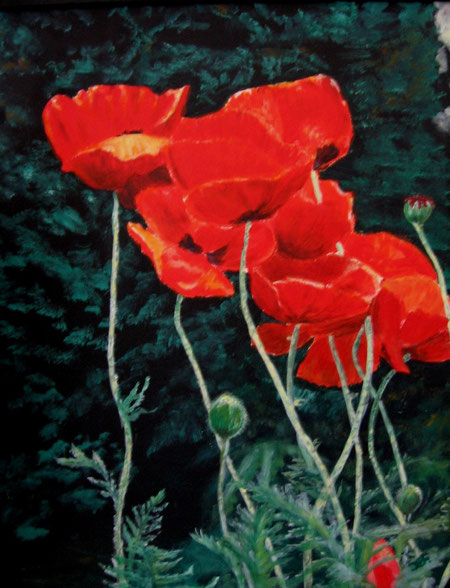 roter Mohn in Acryl