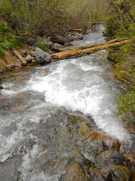 The rushing river.