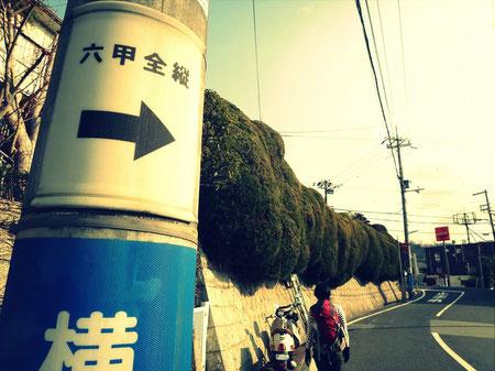 市街地での道迷いは心配なし