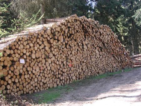 Holzstoß/Wald
