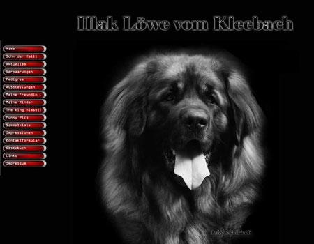 Link zum Löwe von Kleebach