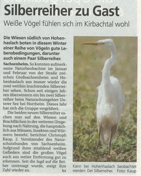 Bietigheimer Zeitung über Silberreiher zuGast im Kirbachtal am 06.03.2008