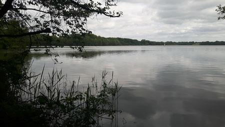 Mözener See, Wittenborn