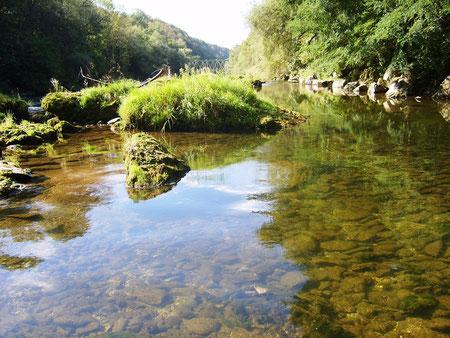 Nebengerinne im Fluss