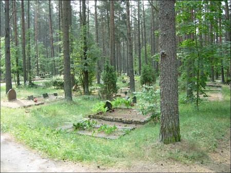 Der Waldfriedhof von Talinn