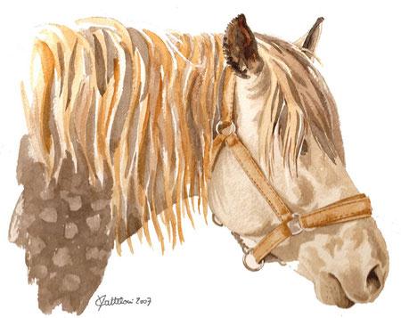 tête et encolure d'un cheval peints en aquarelle