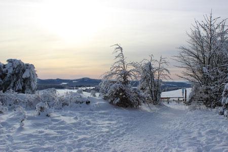 Herrliche Wanderwege, Langlauf, Rodelbahnen und vor allem Ski Abfahrten in der Rhön.