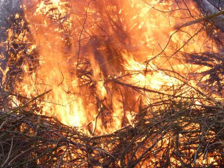 Gott offenbart sich in Feuer und Wind - z. B. im brennenden Dornbusch