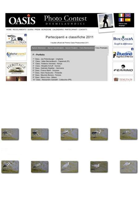4° posto concorso internazionale oasisphotocontest, sezione portfolio, cenerino con biscia