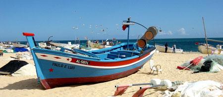 Fischerboote in der Algarve