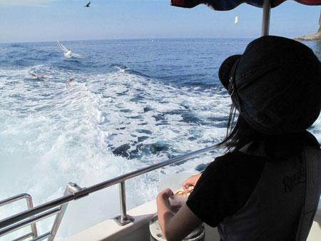 15:01 この船のもう一つのイベント、カモメへの餌やり。娘も楽しんでおりました。