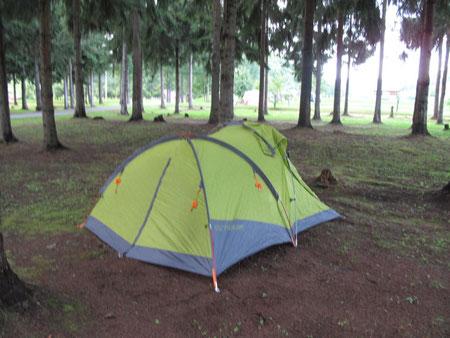 フリーサイト 林間ですが、きちんと整備されており心地良い