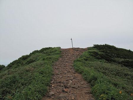 疲れた体に鞭を打ち、猛烈な勢いで頂上に向かう。
