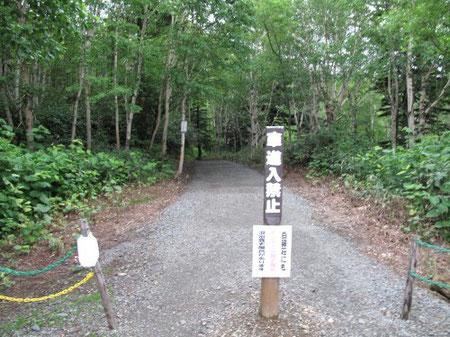 駐車場奥の林道を100m程歩くと 16:44