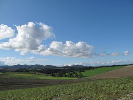 ちなみに10月のこの辺の景色はこうです。