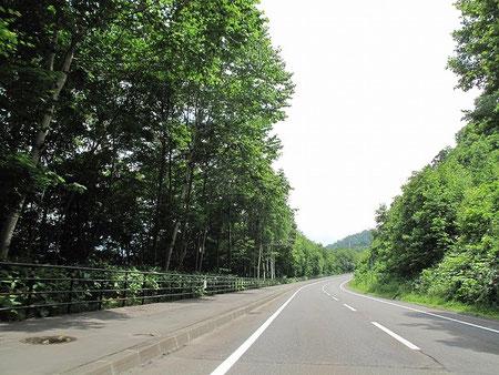横は支笏湖。こんな長閑な道路が好き。