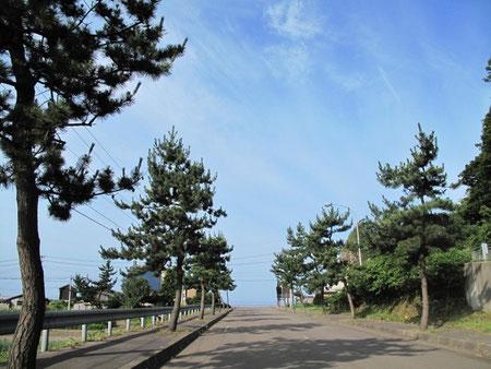 7:36 キャンプ場を出発。正面は日本海。青空が青い(当たり前)