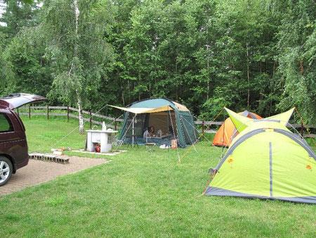 テント4棟なんて余裕。各サイトがとにかく広い! 2家族でも充分楽しめます。