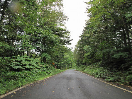8:40 こんな舗装路を延々と13キロ、最後の1キロは未舗装道路