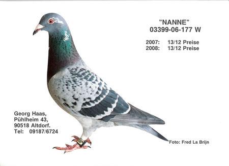 Nanne