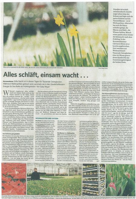 Zeitungsbericht über Pflanzen zum Jahreswechsel