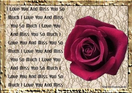 Bild 2 Rose