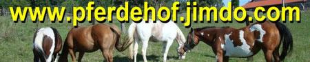 www.pferdehof.jimdo.com