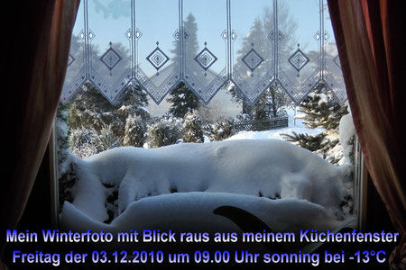 Winterfoto Freitag 03.12.2010