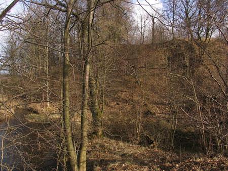 2008 г Hüneberg - Сиренево прусская крепость.