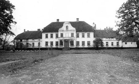 1995 г Trakehnen - Ясная Поляна