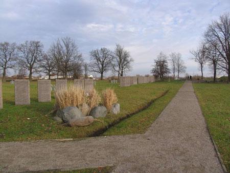 Немецко - русское кладбище 1 и 2 мировой войны. Центральная аллея.