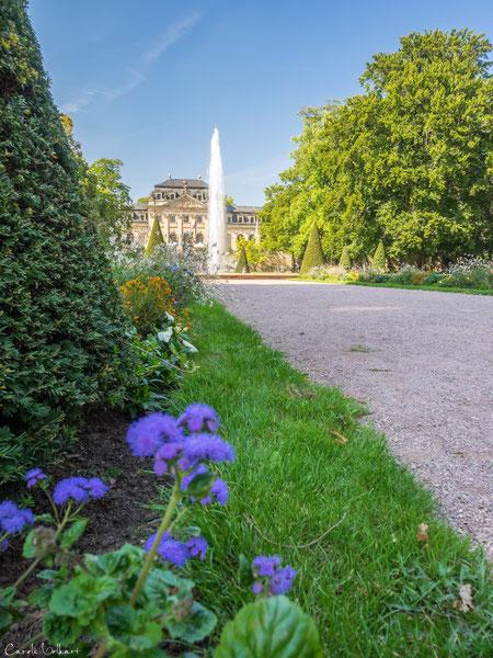 Viele viele bunte Blumen im Schlossgarten von Fulda