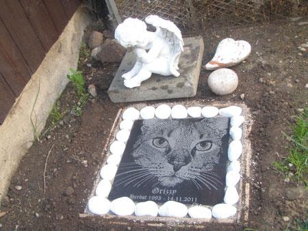 Granitplatte auf dem Grab meiner allerliebsten Katze Grizzy ... ich vermisse Dich so sehr und werde Dich immer lieben ...