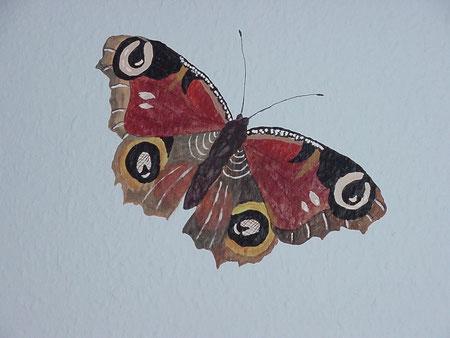 Schmetterling auf einer Wand