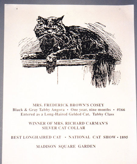 Cosey, best longhaired cat, National Cat Show, Madison Square Garden, New York, USA, 1895