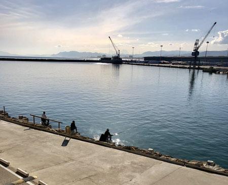 Gandia, Hafen, 01/2018