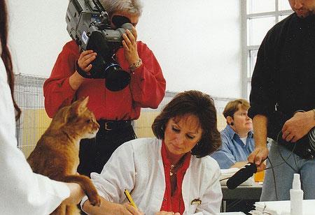 Birgitta auf einer Katzenausstellung beim Richten einer Somalikatze
